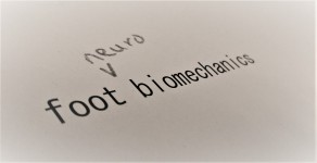 neuro biomech2